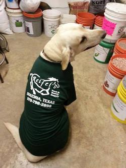 Our store mascot Hero