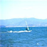 浜名湖 ウインドサーフィン2021.1.13.jpg