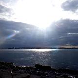 浜名湖 村櫛海岸 ウインドサーフィン 2021.3.1 .jpg
