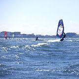 浜名湖 村櫛海岸 ウインドサーフィン2021.1.31.jpg