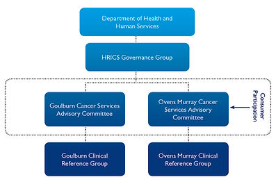 HumeRICS_Governance Structure.jpg