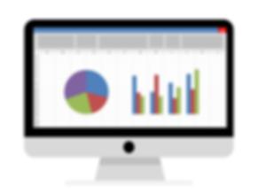 Computer Screen Excel Image מסך מחשב אקסל הקלדת נתונים