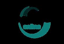 logo-encephale.png