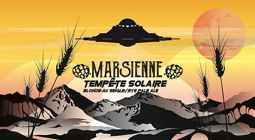 Bière Tempête solaire 33CL