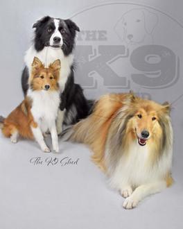 Millie Lassie Pearl1.jpg