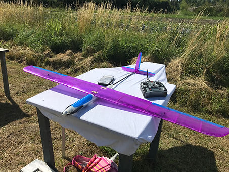 BanRC4 1.8m wingspan glider