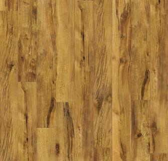 golden brush oak.jpg