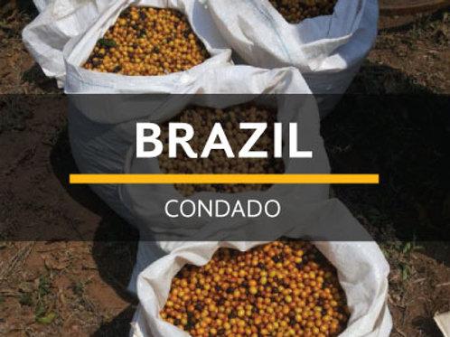 BRAZIL | CONDADO