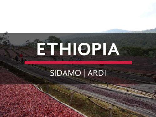 ETHIOPIA | SIDAMO-ARDI