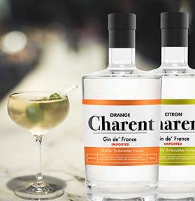 gin.jpeg