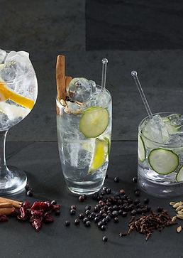 gin_tonic_dbl_brands.jpg