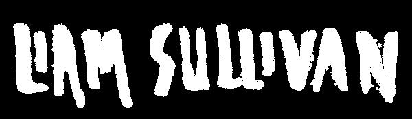 LIAM SULLIVAN Logotyope White.png