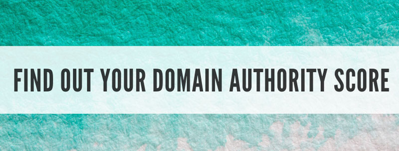 how to find out your domain authority score