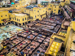 morocco-209-tannery