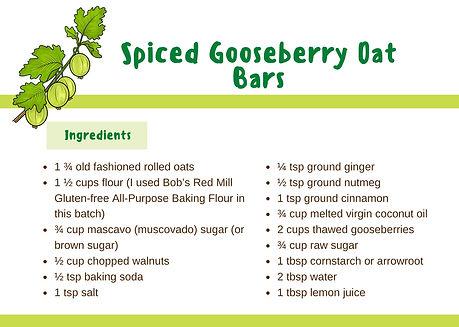 Spiced Gooseberry Oat bars
