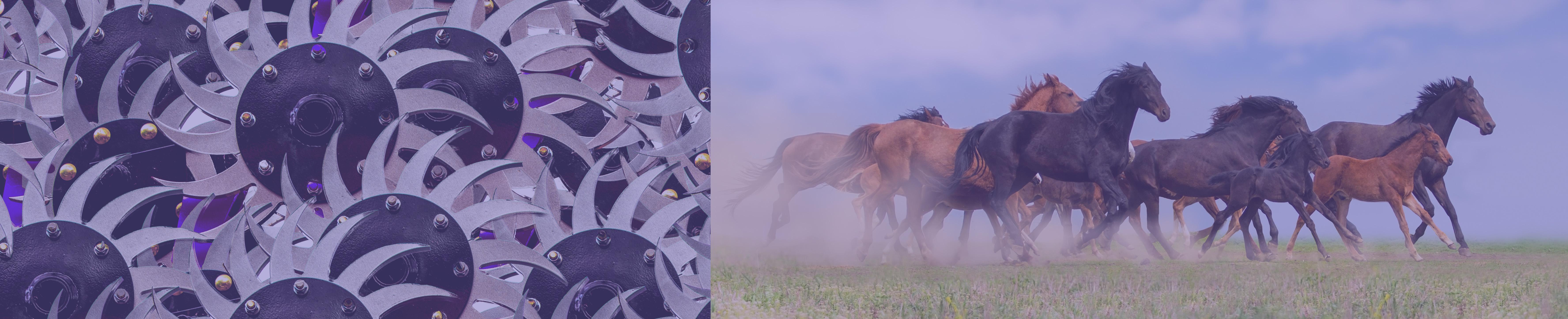 Harrow_Running Horses