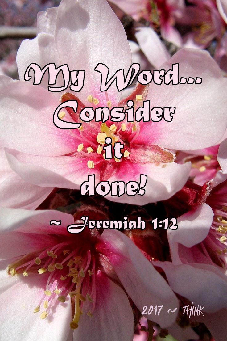 Almond Bloom Scripture Quote