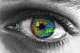 eye-1559497.jpg