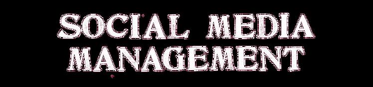 Social%20Media%20Management_edited.png