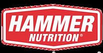 hammer_logo_trans.png