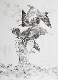 birdtree_web01.jpg