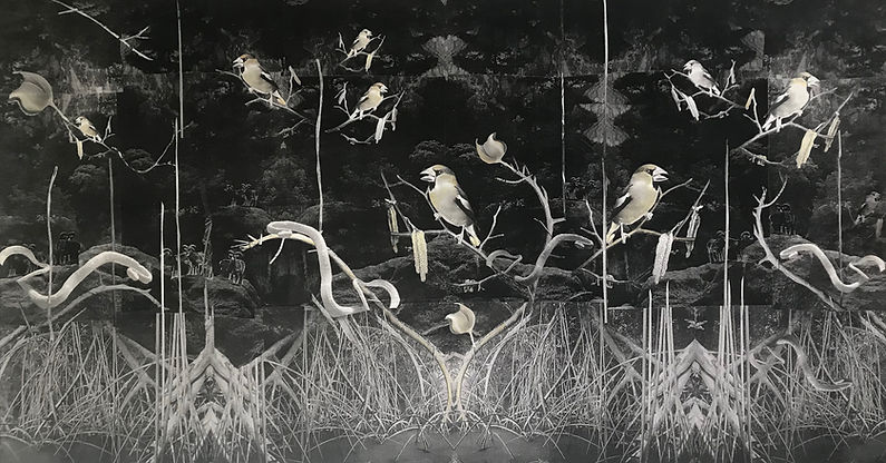 blackbird_web.jpg