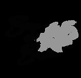 Logo - Bora da BesaTR-01.png