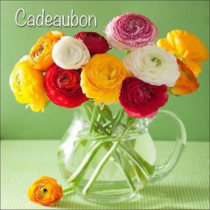 Vierkante kadobon - Vbon 61