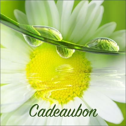 Vierkante kadobon - Vbon 58
