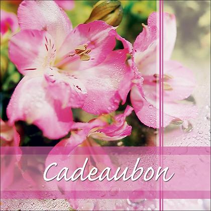 Vierkante kadobon - Vbon 33