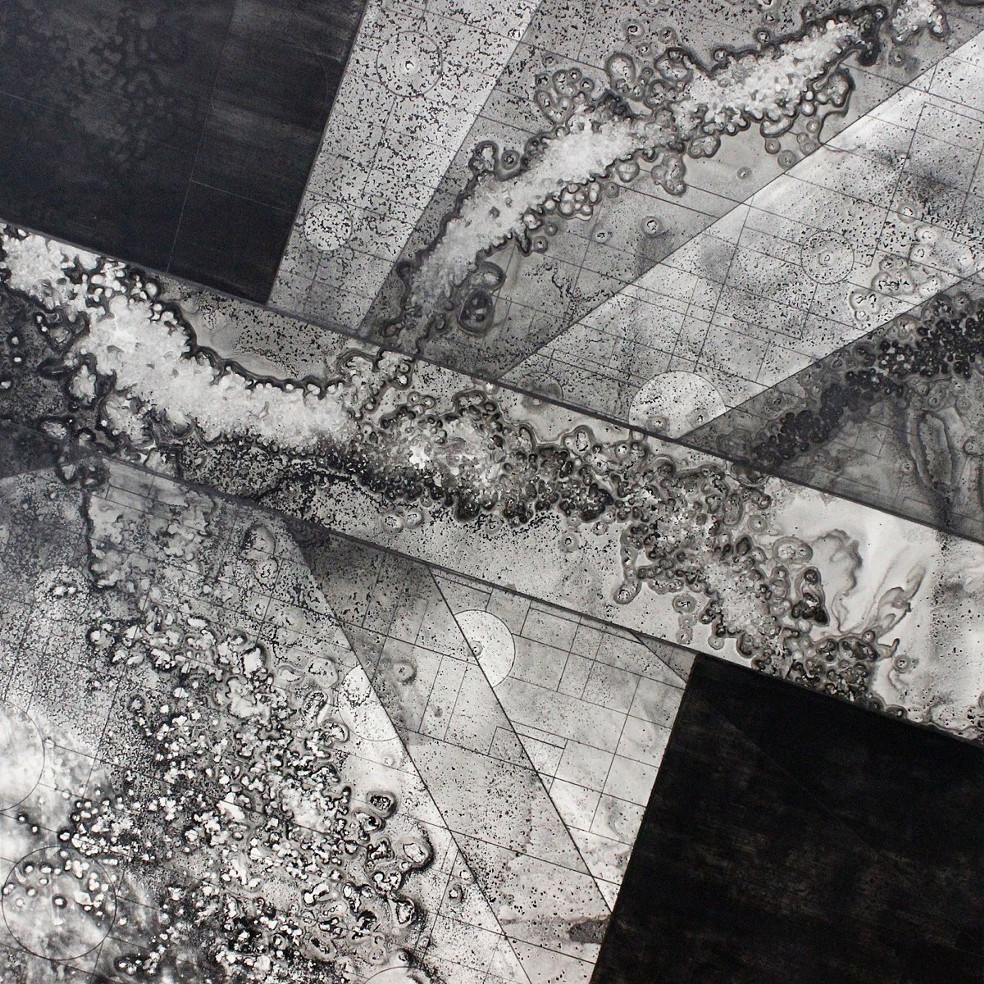 Spending Time in Places I've Never Been...(Djerassi Series #4) ink, graphite, acrylic on duralar mounted on clayboard, 30 x 30 inches