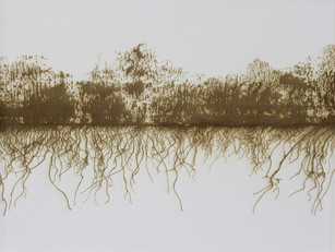 burn (fragile), laser engraved drawing on paper, 18 x 24 inches