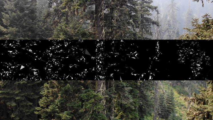 Cascade, still of video