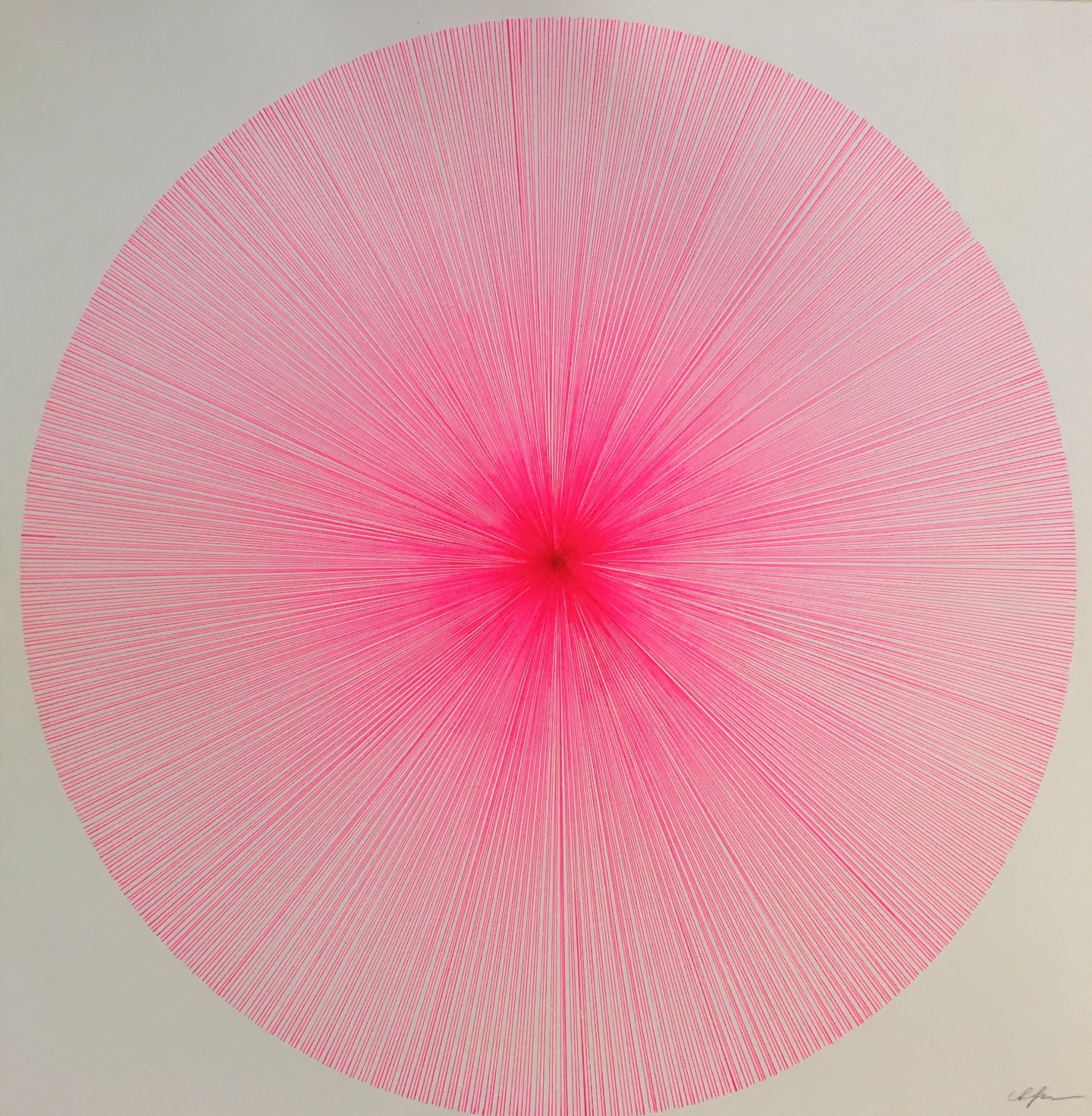 Radial in Pink