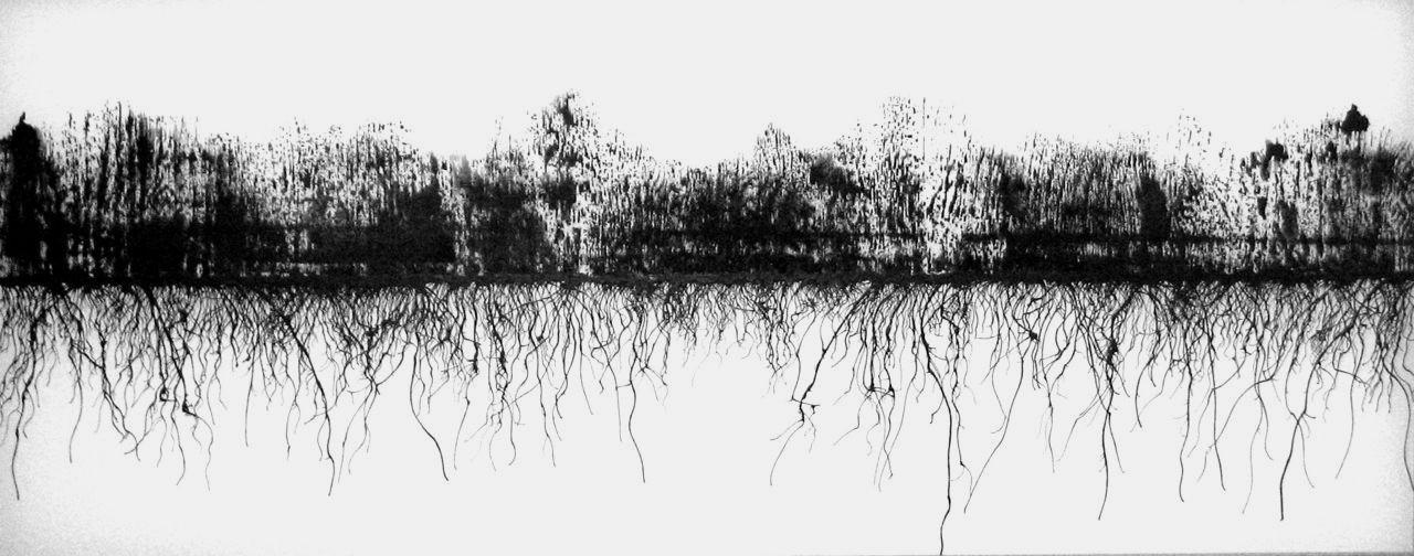 burn (Fall Creek), ink on duralar, 20 x 48 inches