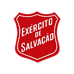 Logo escudo - duas cores - site wix - ic