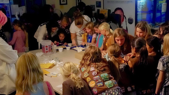 Girl scouts at work