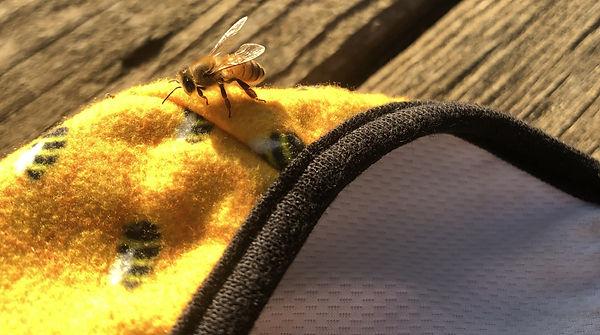 Honeybee%20on%20mask_edited.jpg