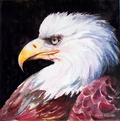 2015_10_25 Eagle Eye 12 x 12 s