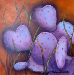 purple passion prickley 1