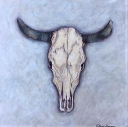 steer spirit  8.11.18
