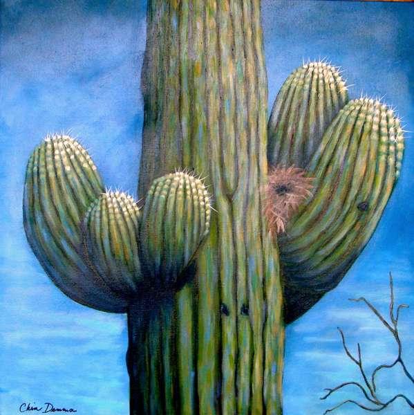 nesting Saguaro_599_600