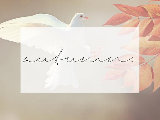 Gedanken zum Herbstanfang - Worauf es im Leben wirklich ankommt