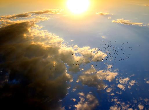 Hochbegabte und ihre Sorgen – Warum über den Wolken immer die Sonne scheint