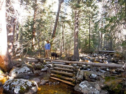 Roaring Fork Creek Bridge near Lake Granby CO 11.11.16