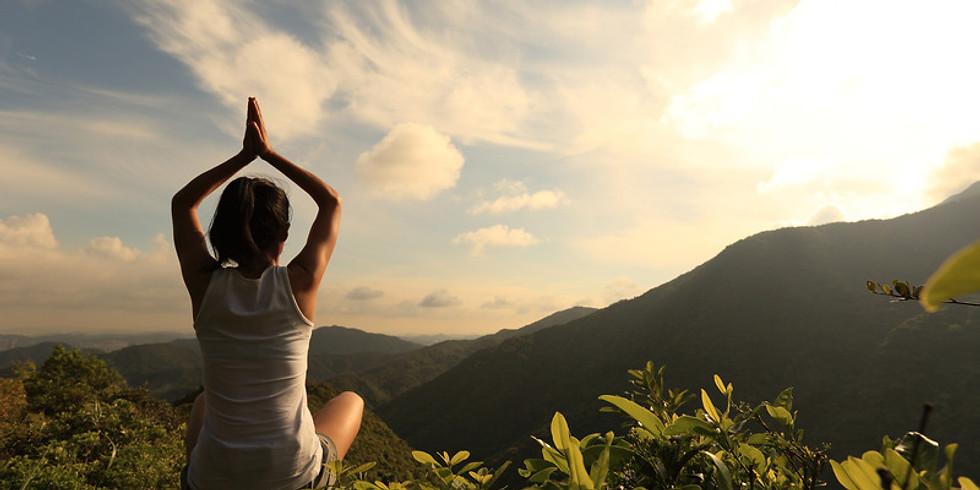 Wellness in the Wilderness- Find Stillness