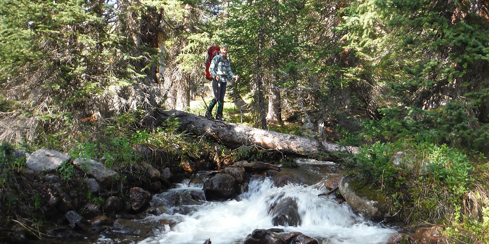 Wellness in the Wilderness- Bold Adventurer