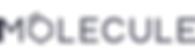 molecule-logo.png