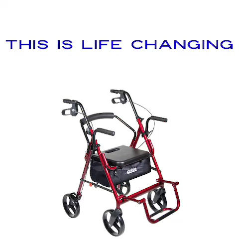 A MUST HAVE Mobility Device