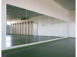 specchi palestre.jpg